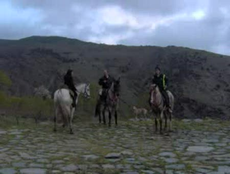 Rutas a Caballo de Alpujarra de la Sierra. 