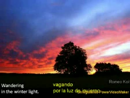 """Winter light"" (Luz de invierno) Sara Brightman"